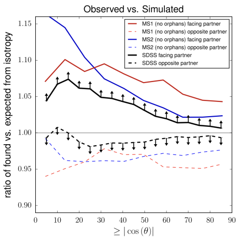 Comparison of the angular distribution of satellites galaxies around paired host galaxies between systems observed in SDSS and two cosmological simulations based on the Lambda Cold Dark Matter Model, showing good agreement between the observed and simulated distributions.