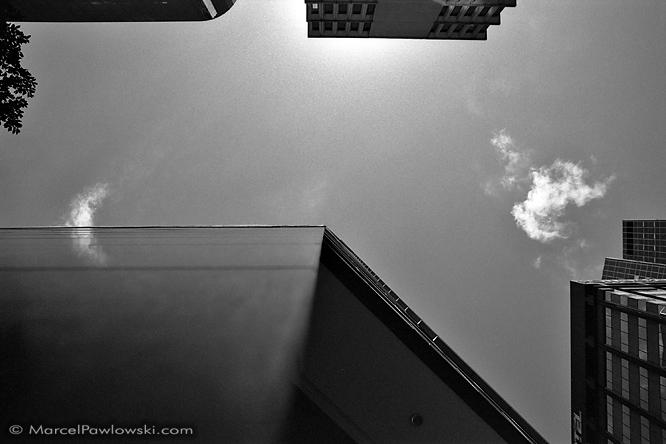Sydney19